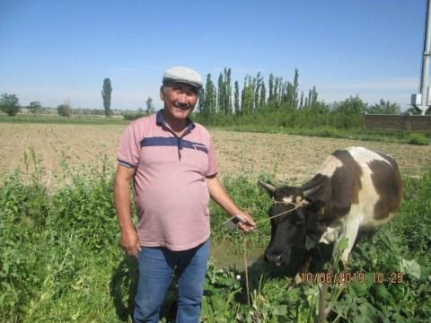 photo of Mukhambet