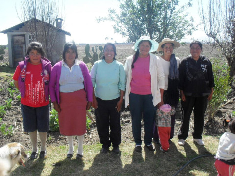 photo of Las Torres Group