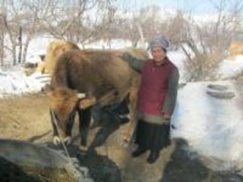 photo of Zhailoogul