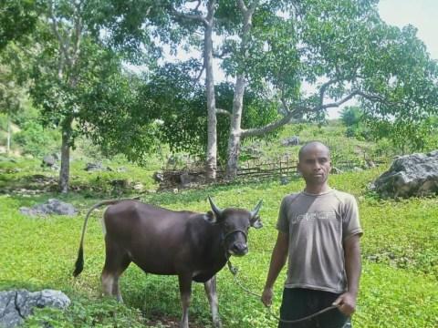 photo of Rodinho