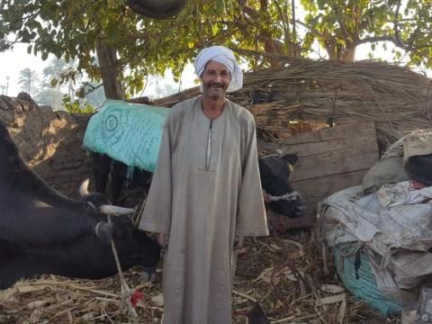 photo of Gamal