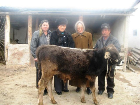 photo of Jamyilakan Jumaeva's Group