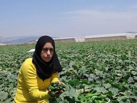 photo of Afaf