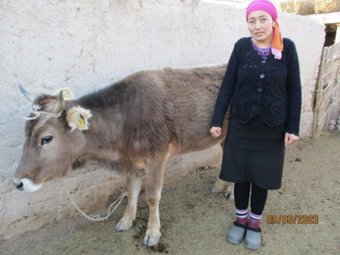 photo of Nurzada