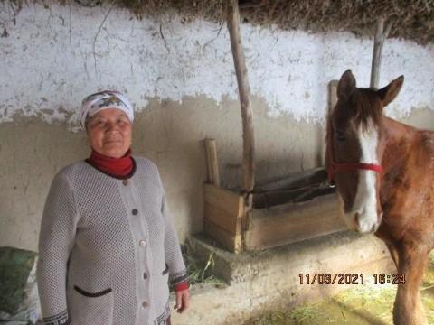 photo of Tazhinisa