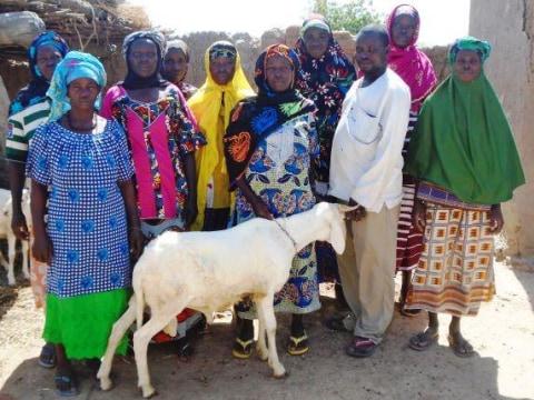 photo of Kotognogontala Group