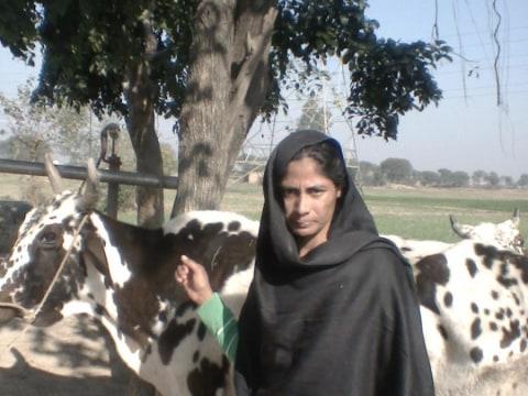 photo of Mahduma