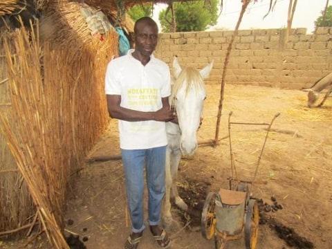 photo of Dioubo Ndiaffate Group