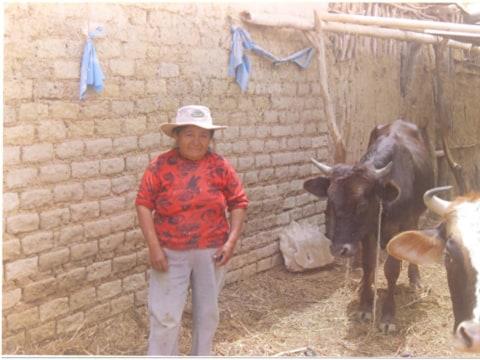 photo of Teodosa