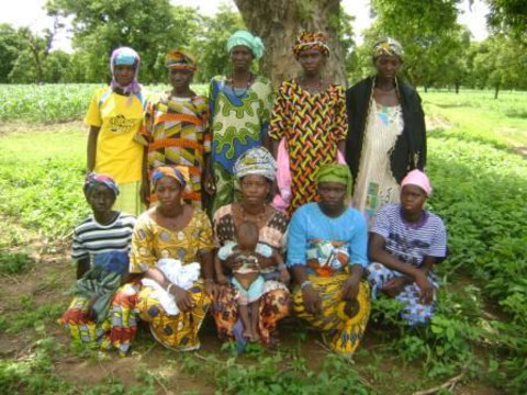 photo of Danaya 1 Group
