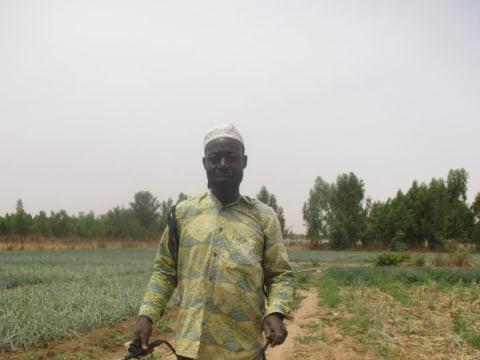 photo of Djibrina