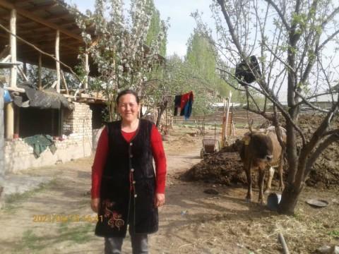 photo of Sanabar